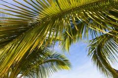 παραλία Μαυρίκιος τροπι&kap Στοκ Εικόνες