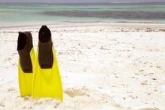 παραλία Μαλβίδες τροπικέ&s Στοκ Εικόνα