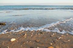 Παραλία με πολλά κοχύλια και κύματα Στοκ εικόνα με δικαίωμα ελεύθερης χρήσης