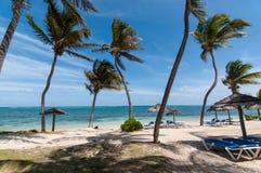Παραλία με τον μπλε ωκεανό στις Καραϊβικές Θάλασσες Στοκ Εικόνες
