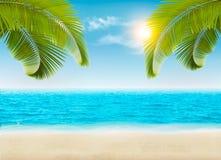 Παραλία με τους φοίνικες και μια παραλία διανυσματική απεικόνιση