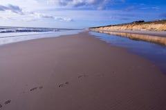 Παραλία ονείρου Στοκ φωτογραφία με δικαίωμα ελεύθερης χρήσης