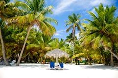 Παραλία παραδείσου με τους φοίνικες και sunbeds Στοκ φωτογραφία με δικαίωμα ελεύθερης χρήσης