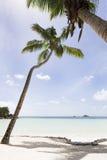 Παραλία παραδείσου, νησί Praslin, Σεϋχέλλες Στοκ φωτογραφία με δικαίωμα ελεύθερης χρήσης