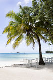 Παραλία παραδείσου, νησί Praslin, Σεϋχέλλες Στοκ Εικόνα