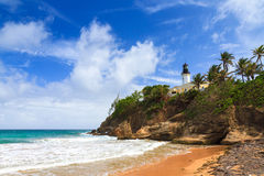 Παραλία Πουέρτο Ρίκο τόνου Punta Στοκ εικόνες με δικαίωμα ελεύθερης χρήσης