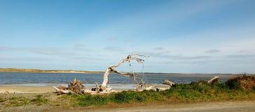 παραλία που απομονώνετα&iot Στοκ φωτογραφίες με δικαίωμα ελεύθερης χρήσης