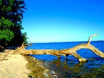 Παραλία πρωινού στοκ εικόνα
