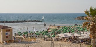 Παραλία πόλεων στην πόλη του Τελ Αβίβ Ισραήλ Στοκ Εικόνες