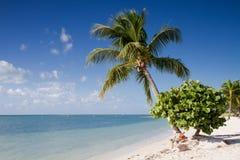 Παραλία σομπρέρο στους Florida Keys Στοκ φωτογραφία με δικαίωμα ελεύθερης χρήσης