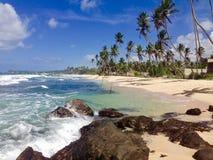 Παραλία Σρι Λάνκα παραδείσου Στοκ Εικόνες
