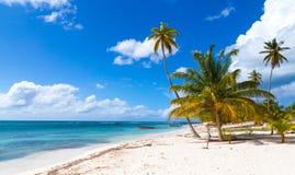 Παραλία στη Δομινικανή Δημοκρατία Saona Στοκ Φωτογραφία