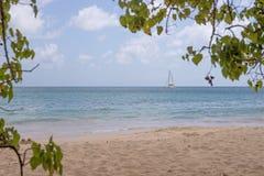 Παραλία στη Μαρτινίκα, Grande Anse des Salines Στοκ φωτογραφία με δικαίωμα ελεύθερης χρήσης