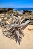 Παραλία στη Μαδαγασκάρη, Antsiranana, Diego Suarez Στοκ εικόνες με δικαίωμα ελεύθερης χρήσης