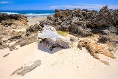 Παραλία στη Μαδαγασκάρη, Antsiranana, Diego Suarez Στοκ εικόνα με δικαίωμα ελεύθερης χρήσης
