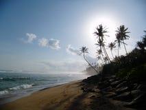 Παραλία στη Σρι Λάνκα Στοκ Εικόνα
