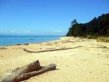 Παραλία στο εθνικό πάρκο του Abel Tasman, Νέα Ζηλανδία Στοκ Εικόνες