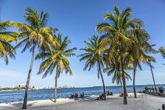 Παραλία στο στο κέντρο της πόλης Μαϊάμι στοκ εικόνα
