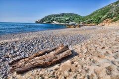 Παραλία στο Parque φυσική DA Arrabida, Στοκ εικόνα με δικαίωμα ελεύθερης χρήσης