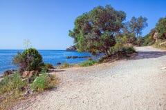 Παραλία στο Parque φυσική DA Arrabida, Στοκ φωτογραφία με δικαίωμα ελεύθερης χρήσης