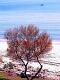 Παραλία της αλλαγής βάρδιας στο Καντίζ Στοκ εικόνες με δικαίωμα ελεύθερης χρήσης