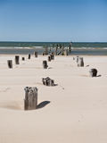Παραλία της θάλασσας της Βαλτικής με τους βράχους και το παλαιό ξύλο Στοκ Φωτογραφία