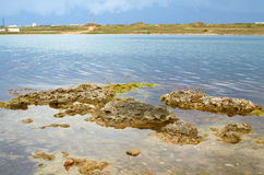Παραλία της Κριμαίας Στοκ εικόνες με δικαίωμα ελεύθερης χρήσης