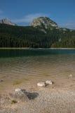 Παραλία της μαύρης λίμνης, εθνικό πάρκο Durmitor, Μαυροβούνιο Στοκ Φωτογραφίες