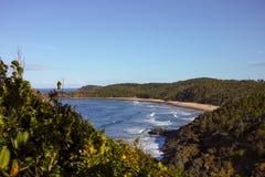 Παραλία της Shelly από τον επικεφαλής λόφο Nobbys στο λιμένα Macquarie Αυστραλία Στοκ Φωτογραφίες