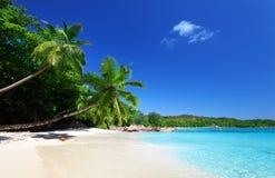 Παραλία του Λάτσιο Anse στο νησί Praslin Στοκ φωτογραφίες με δικαίωμα ελεύθερης χρήσης