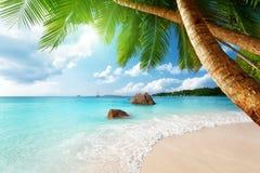 Παραλία του Λάτσιο Anse Praslin στο νησί, Σεϋχέλλες Στοκ εικόνα με δικαίωμα ελεύθερης χρήσης