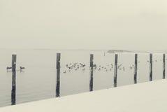 Παραλία του Τζόουνς Στοκ Εικόνα