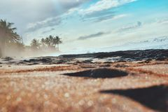 Παραλία, τροπική Στοκ Φωτογραφία