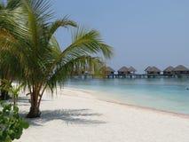 Παραλία των Μαλδίβες με το θέρετρο Στοκ φωτογραφία με δικαίωμα ελεύθερης χρήσης
