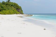Παραλία των Μαλδίβες Στοκ εικόνα με δικαίωμα ελεύθερης χρήσης