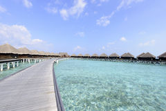 Παραλία των Μαλδίβες Στοκ φωτογραφία με δικαίωμα ελεύθερης χρήσης