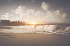 παραλία Χαβάη Στοκ Φωτογραφίες