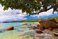 Παραλία Anse Λάτσιο - Σεϋχέλλες Στοκ Εικόνες