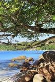Παραλία Anse Λάτσιο Στοκ Εικόνα