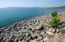 Παραλία Capernaum Στοκ φωτογραφίες με δικαίωμα ελεύθερης χρήσης