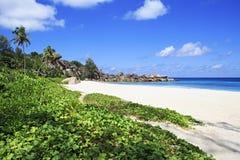 Παραλία Grande Anse Στοκ Φωτογραφίες