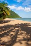 Παραλία Grande Anse, Deshaies, Γουαδελούπη Στοκ Εικόνα