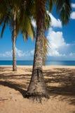 Παραλία Grande Anse, Deshaies, Γουαδελούπη Στοκ φωτογραφίες με δικαίωμα ελεύθερης χρήσης