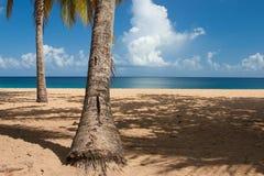 Παραλία Grande Anse, Deshaies, Γουαδελούπη Στοκ φωτογραφία με δικαίωμα ελεύθερης χρήσης