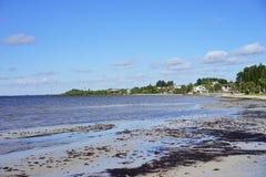 Παραλία hernando της Φλώριδας Στοκ Φωτογραφία