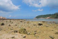 Παραλία Koh Phangan, Ταϊλάνδη Στοκ φωτογραφία με δικαίωμα ελεύθερης χρήσης