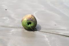 παραλία Lanzarote Στοκ εικόνες με δικαίωμα ελεύθερης χρήσης