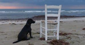 Παραλία Makenzy Στοκ Εικόνες