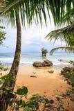 Παραλία Manzanillo Κόστα Ρίκα Στοκ φωτογραφίες με δικαίωμα ελεύθερης χρήσης