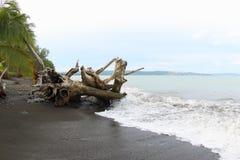 Παραλία Maruni, Manokwari Στοκ Φωτογραφίες